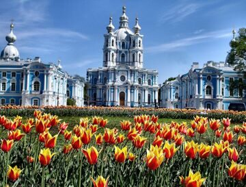 Russia-Saint-Petersburg-Tulips-in-Front-of-Smolny-Cathedral